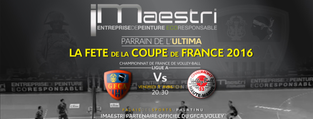 Volley-Ball : Place à la fête avec GFCA-Chaumont au Palatinu !