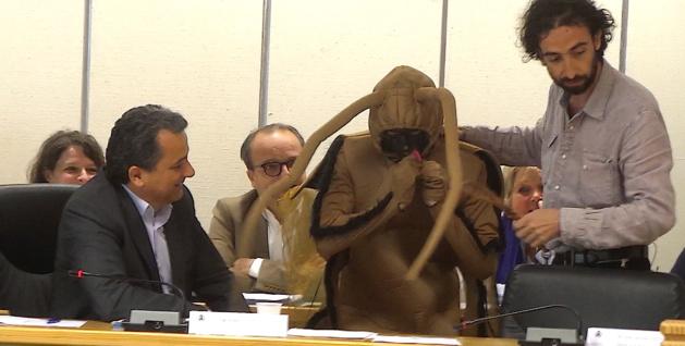 Communauté d'agglo de Bastia : Alexy, le cafard de Minenfootu, s'invite au débat