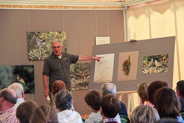 """""""Oiseaux de Corse"""" : La belle exposition au parc de Saleccia"""