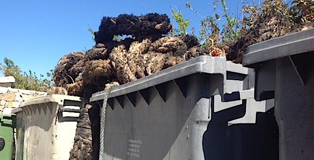 Monticellu : Les riverains du lotissement Castellacciu en guerre contre l'incivisme