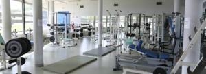 Centre du Sport et de la Jeunesse de Corse : Une authentique  « caisse à outils » pour l'éducation populaire et le sport