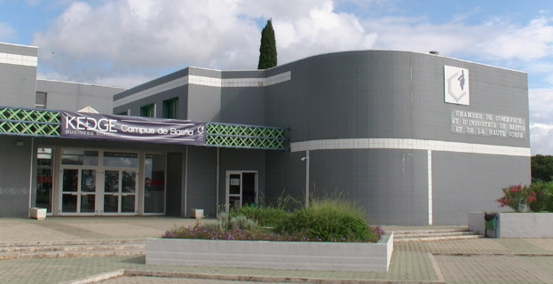 Nouvelle filière à l'Ecole de management de la CCI de Bastia