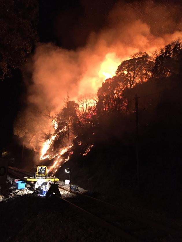 Ajaccio : Un violent incendie a détruit 5000 m2 de maquis à l'entrée de la ville