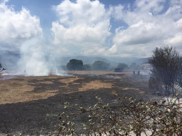 Broussailles et ronciers ont été parcourus par les flammes.