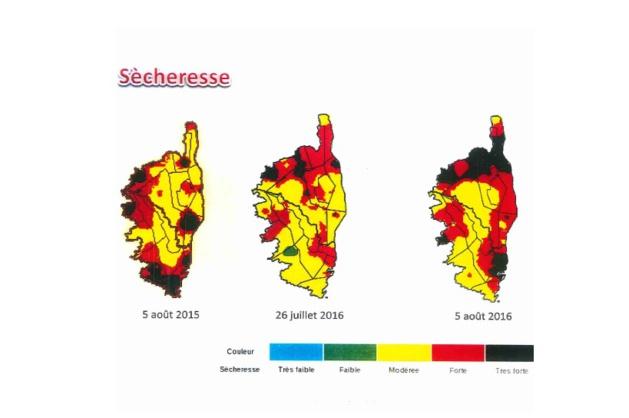 Sécheresse et incendie : Le préfet de Haute-Corse fait le point sur le dispositif de secours