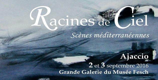 """""""Racines de Ciel"""" : l'édition 2016 dans la grande galerie du Musée Fesch"""