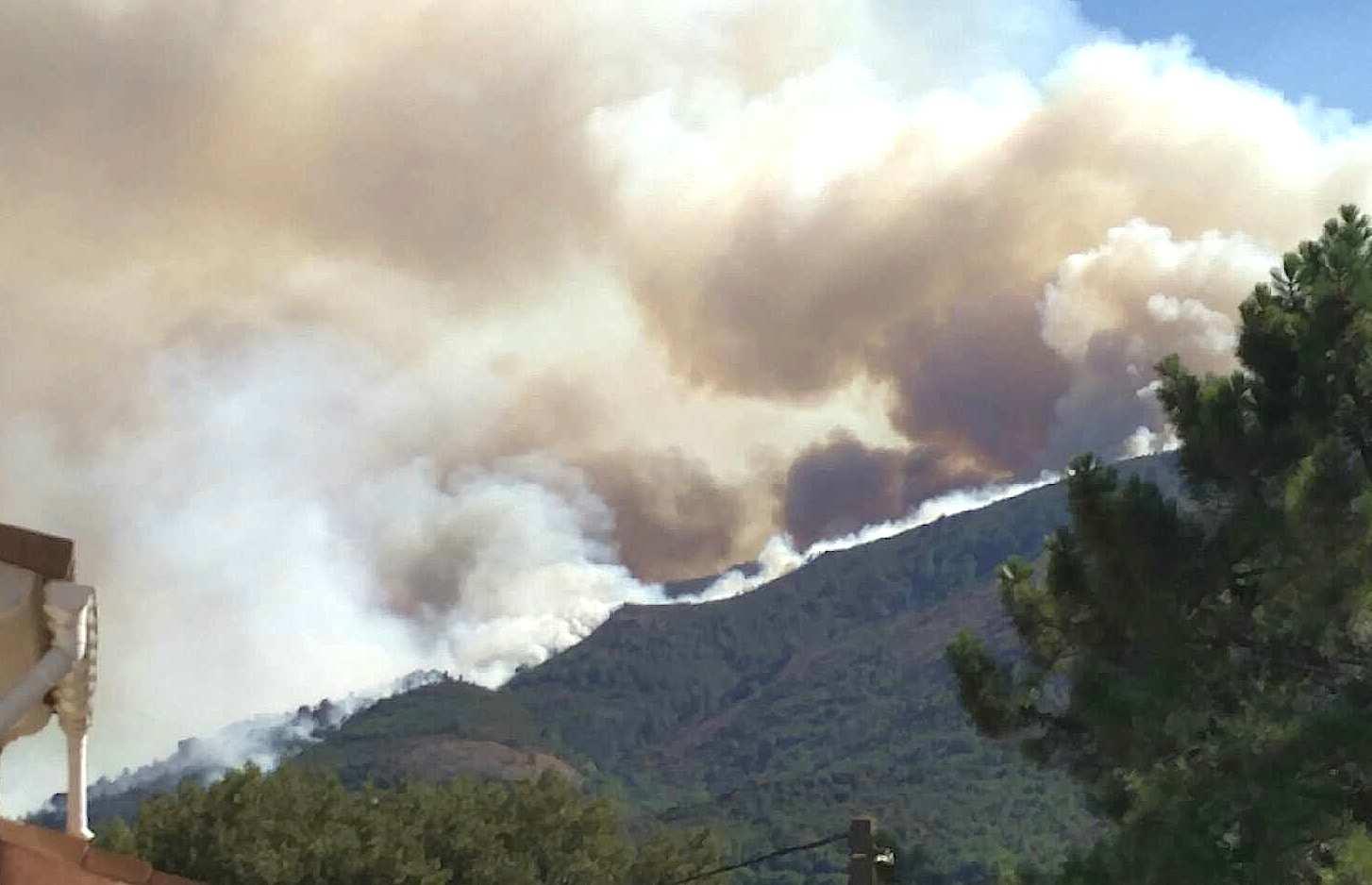 Corte : Plus de 145 hommes engagés sur l'incendie qui a parcouru 60 hectares