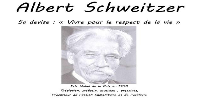 Les travaux d'Albert Schweitzer exposés à la chapelle ste Lucie