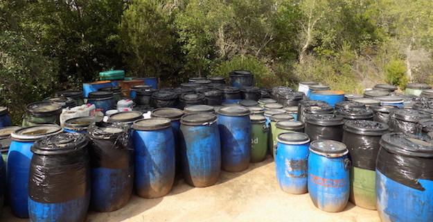 Porto-Vecchio : Plus de 120 fûts d'huile de friture de 50 litres en plein maquis…