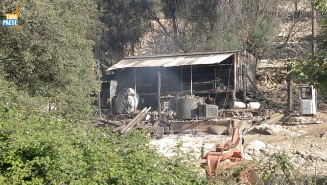 L'exploitation agricole d'Ange Orsini ravagée par un incendie criminel à Aregnu