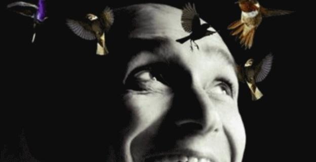 """""""L'oiseau et le vent """" à l'Alb'Oru de Bastia: Un conte musical féerique rempli des voyages et des surprises"""