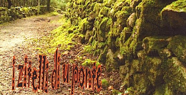 """Vallée du Prunelli : Le SOS de l'association """"I Zitelli di u ponte"""""""