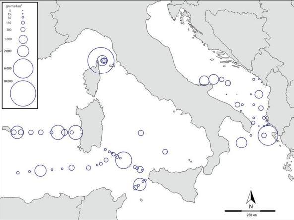 Pic de pollution entre la Corse et la Toscane : Dans la Tyrrhénienne on nage dans une «soupe de plastique»