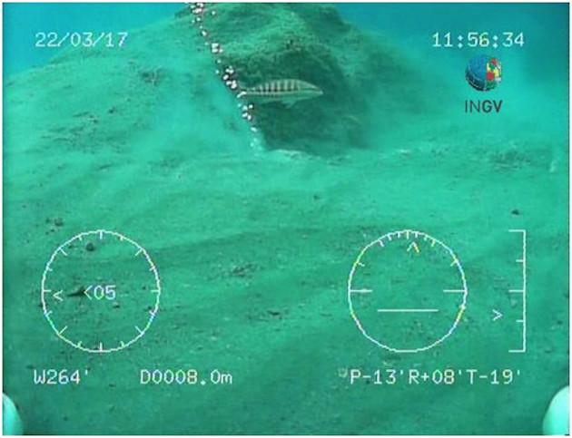 Image sous-marine de la zone affectée par le volcan de boue (image INGV)