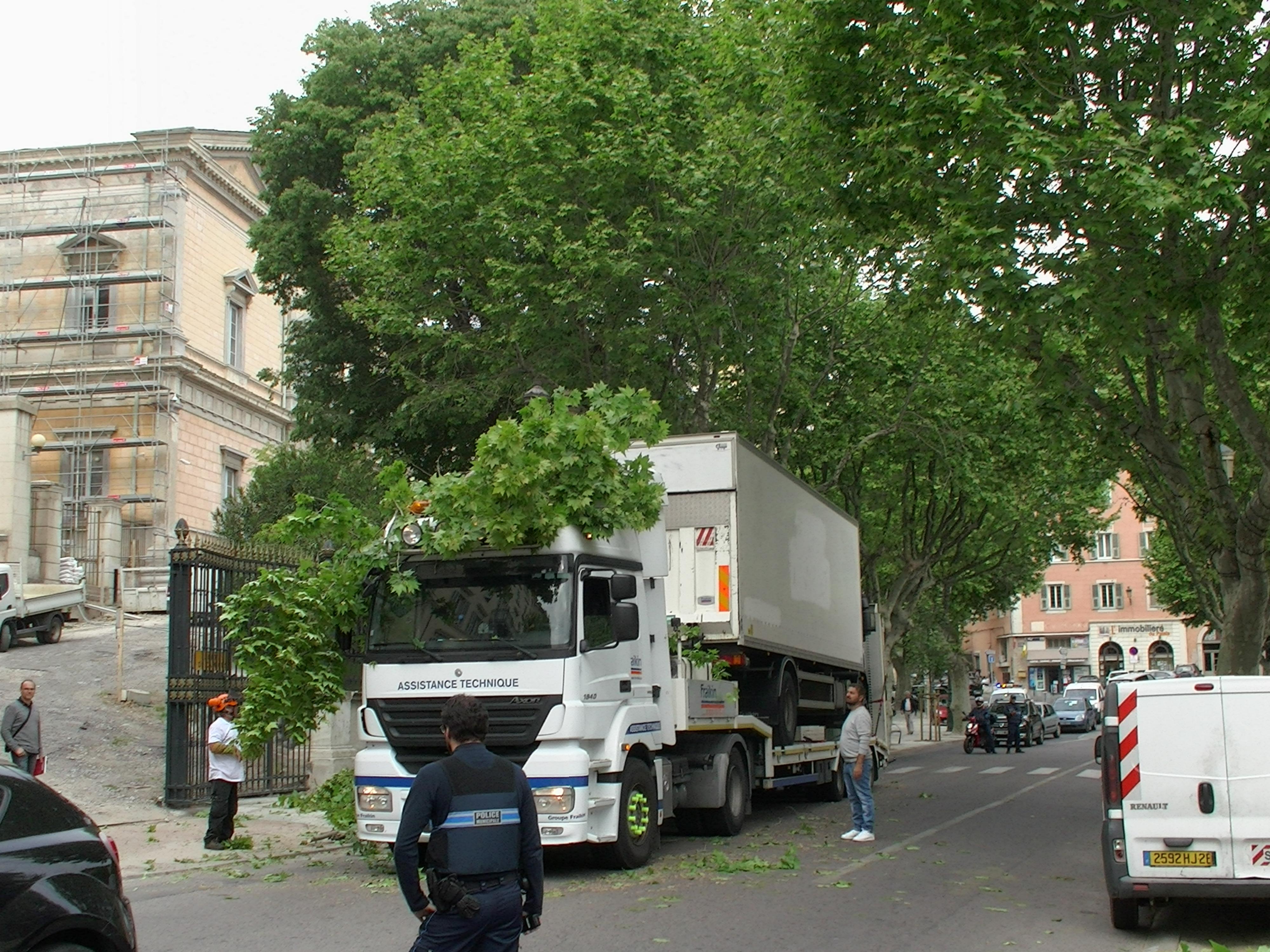 Bastia : Le poids lourd coincé sous les platanes