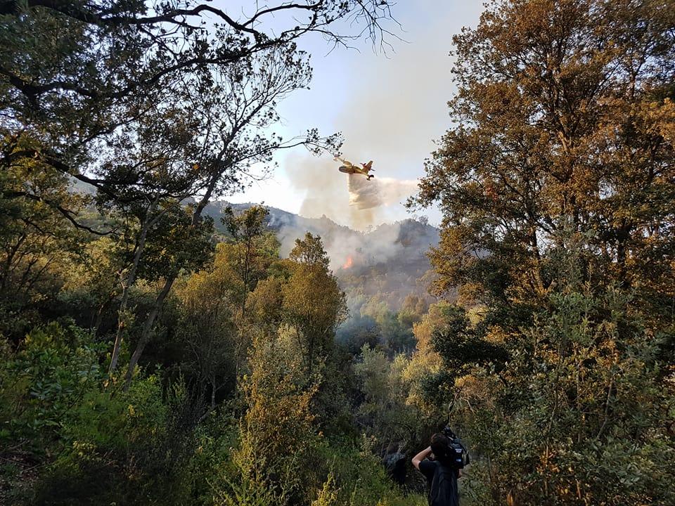 Sarrola : 50 hectares partis en fumée
