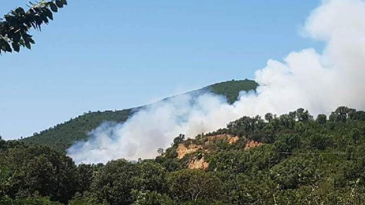 Incendies : Des foyers  en cours à Tavaco et dans le secteur de Porto