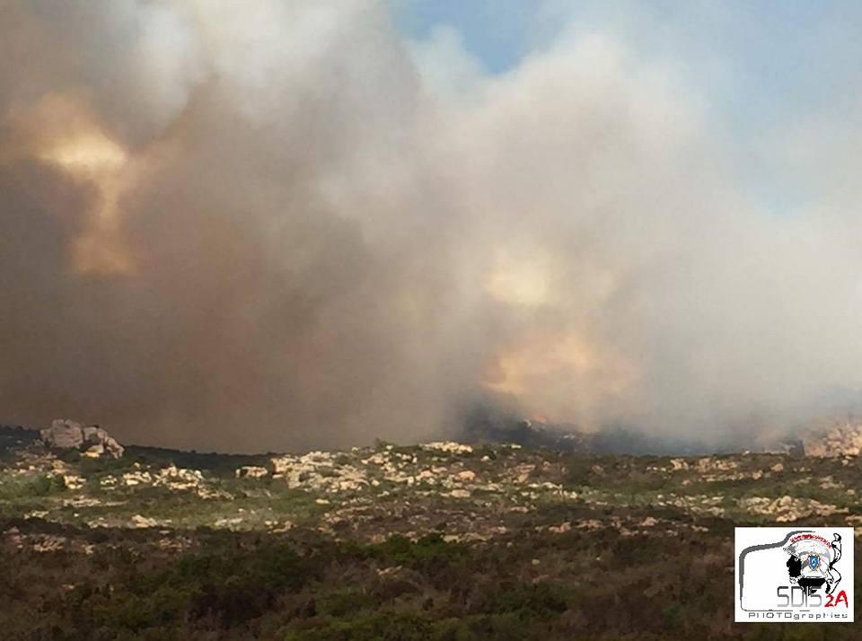 Important incendie à Bonifacio : Plus de 50 hectares, déjà, détruits