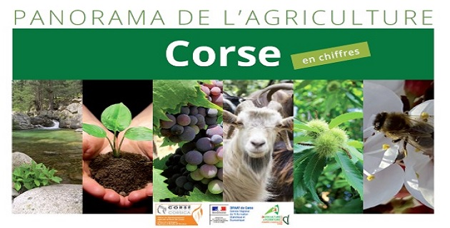 Le « Panorama de l'agriculture en Corse » un document essentiel