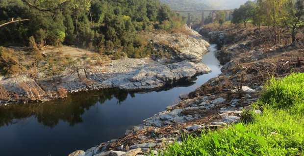 Le Golo au niveau de Ponte-Leccia, en Haute-Corse.