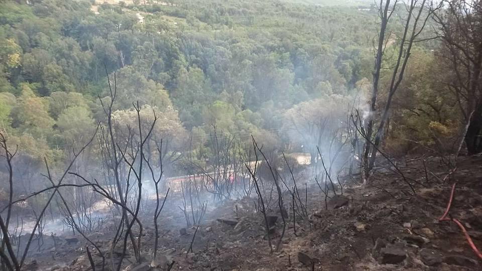 Violent incendie à Castellu-di-Rustinu. 5 hectares détruits à Veru