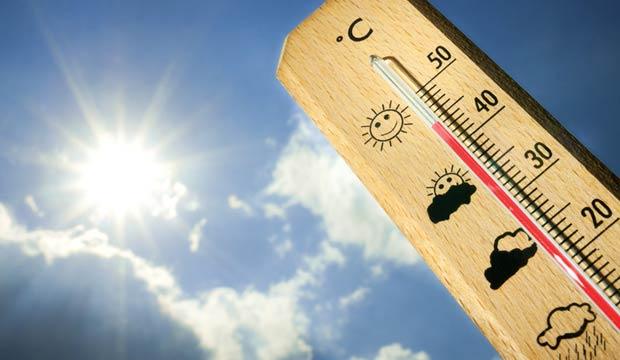 Canicule : Nouveaux records de températures et de consommation électrique, pas d'amélioration jusqu'à dimanche