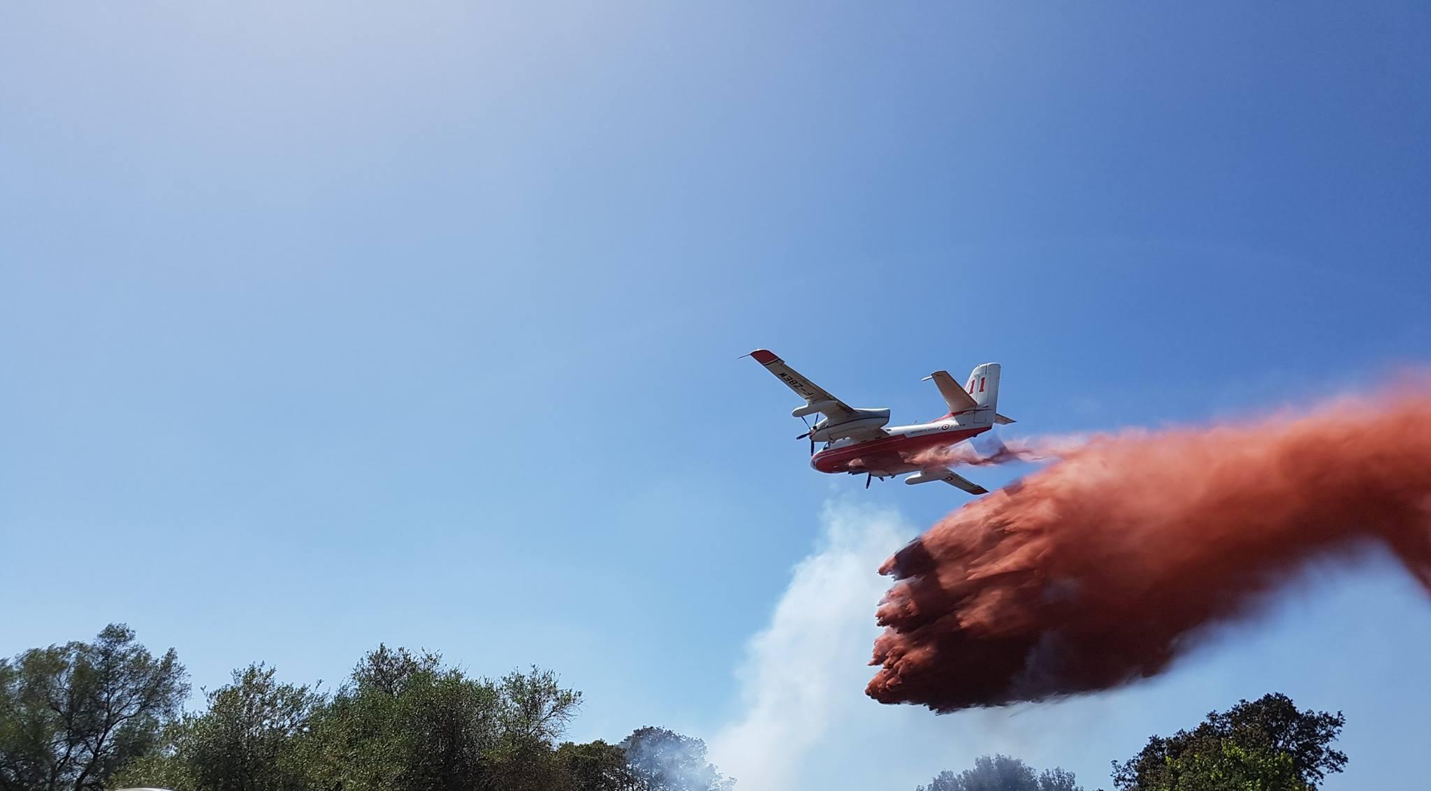 Ajaccio : Deux hectares partent en fumée au château de la Punta