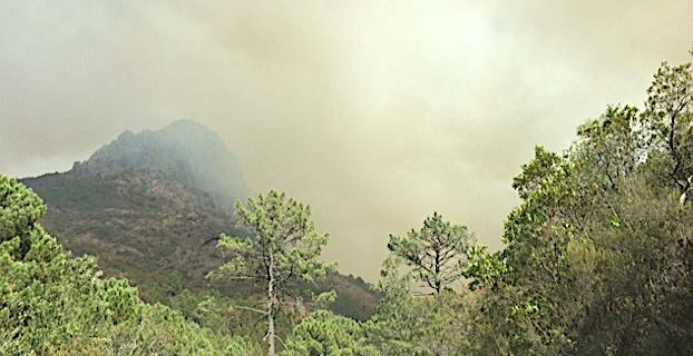 Le feu de Barghjana-Mansu n'est toujours pas maîtrisé