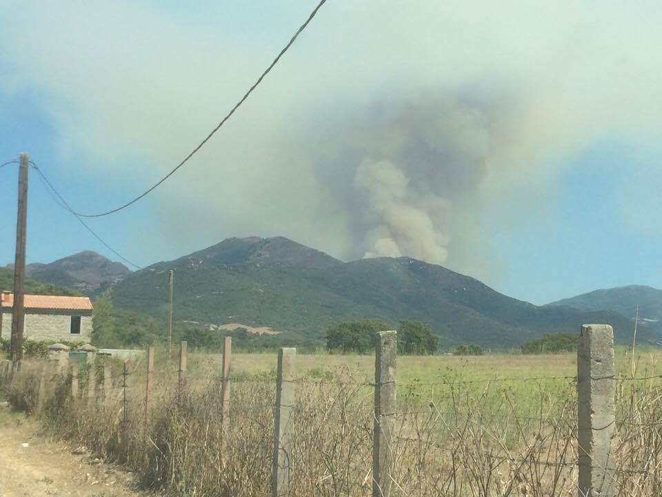 Incendie : Déjà 100 hectares détruits à Loreto di Tallano et Cargiaca