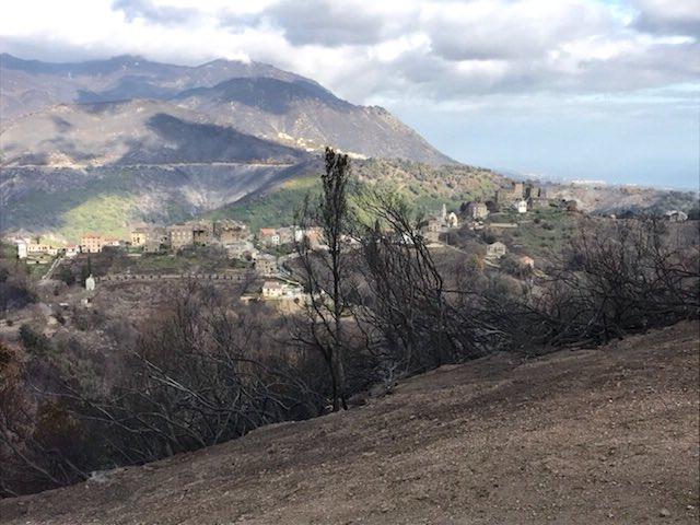 Les dégâts matériels et environnementaux importants en Costa Verde.