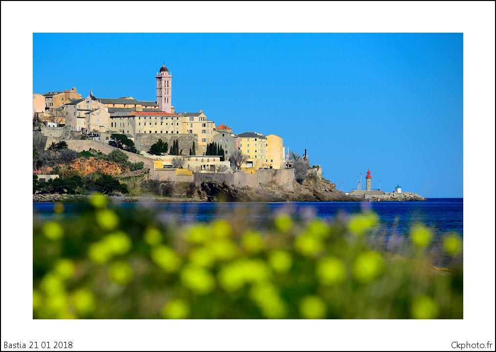 Bastia : Le printemps avant l'heure…