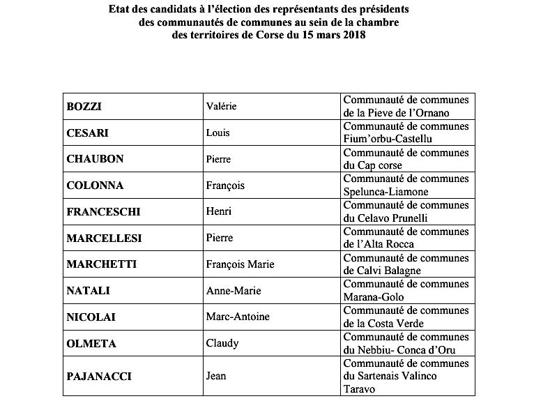 Election à la chambre des territoires de Corse : La suite