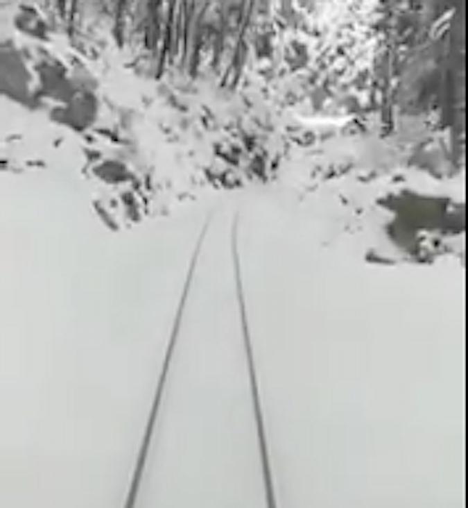 Phénomène Moscou-Paris : Promenade en train jusqu'à Vizzavona