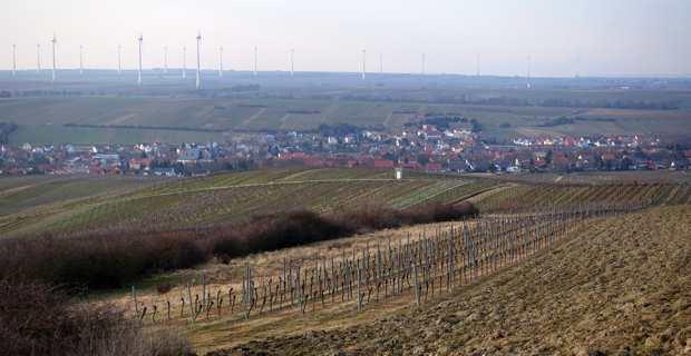 Le village viticole de Bechtolsheim, au coeur de la Rhénanie-Palatinat et aux portes de Mayence.
