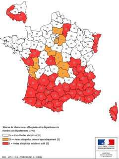 Santé : Alerte rouge contre le moustique tigre en Corse et dans 41 autres départements