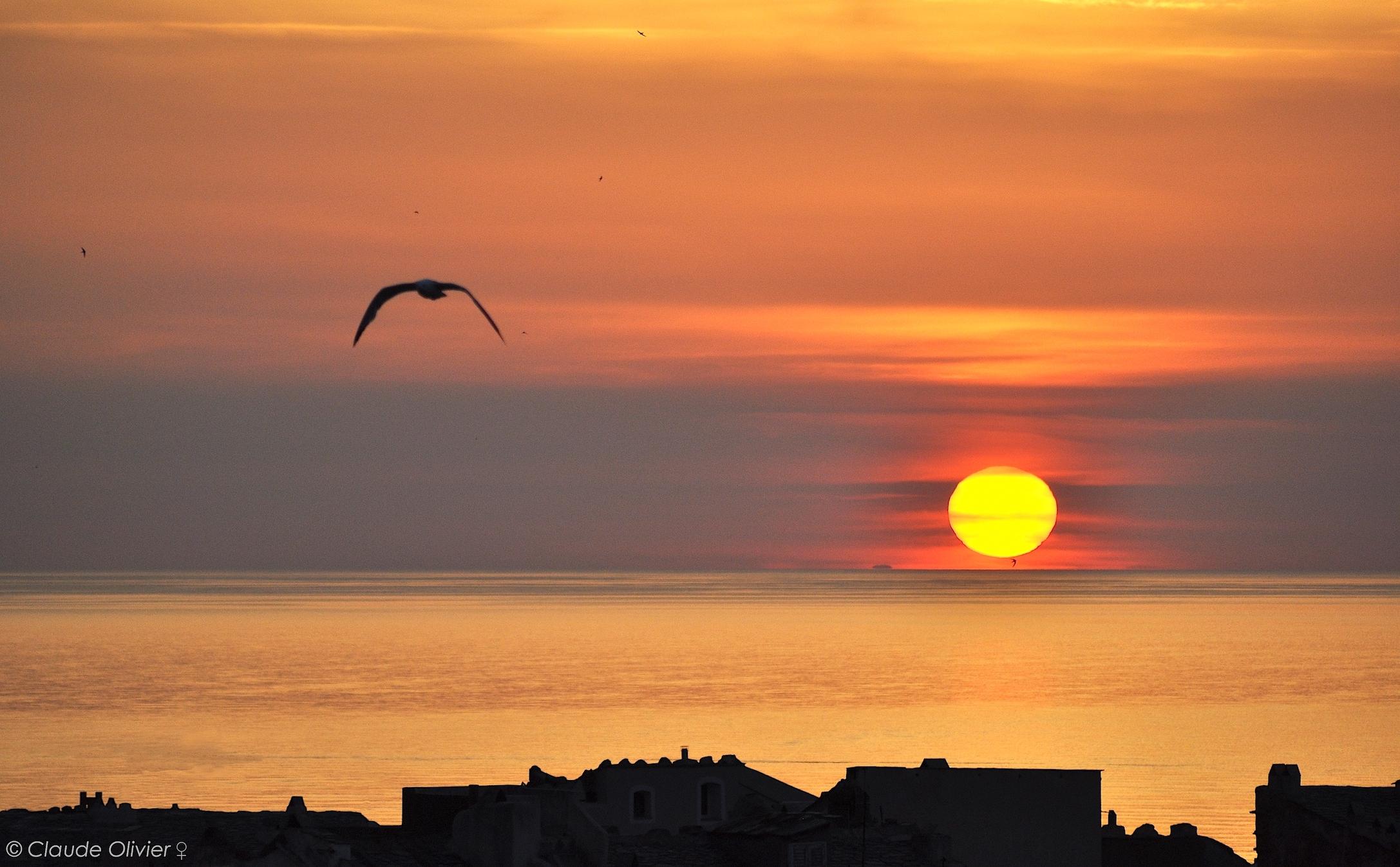 La photo du jour :  Il est 5h50, Bastia s'éveille…