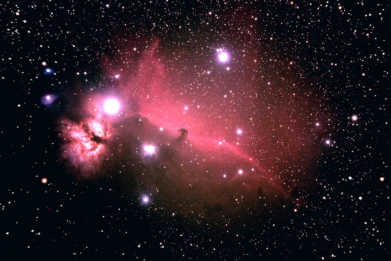 Tête de Cheval dans Orion