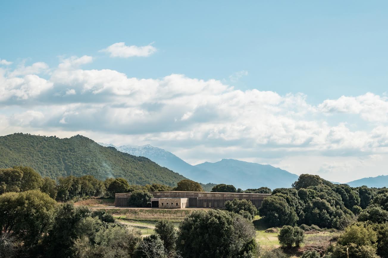 """Santa Maria Siche : Avec l'école """"A Strega"""" Amelia Tavella imagine un temple de l'enfance pur et naturel"""