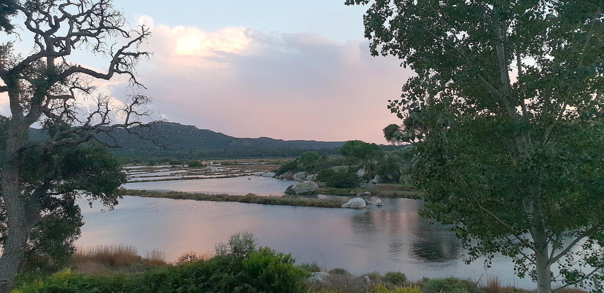 La photo du jour : Quand les salines de Porti Vechju se parent de rose....