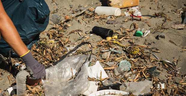 Sur les plages de Méditerranée. Photo Jean-Baptiste Andreani - Mission CorSeaCare.