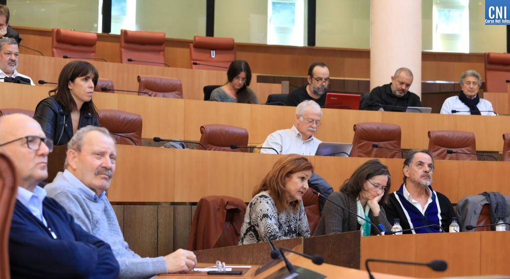 Assemblée Cesec Assemblée plénière du Cesec de Corse
