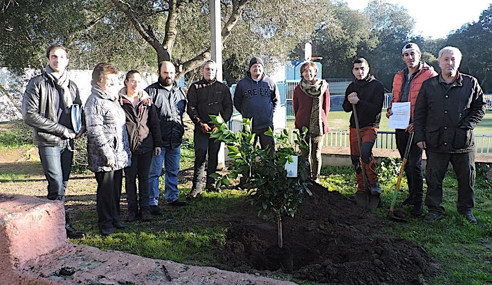 Porto-Vecchio  : Chantier d'insertion arboricole «Agrumes aux mille Fleurs»