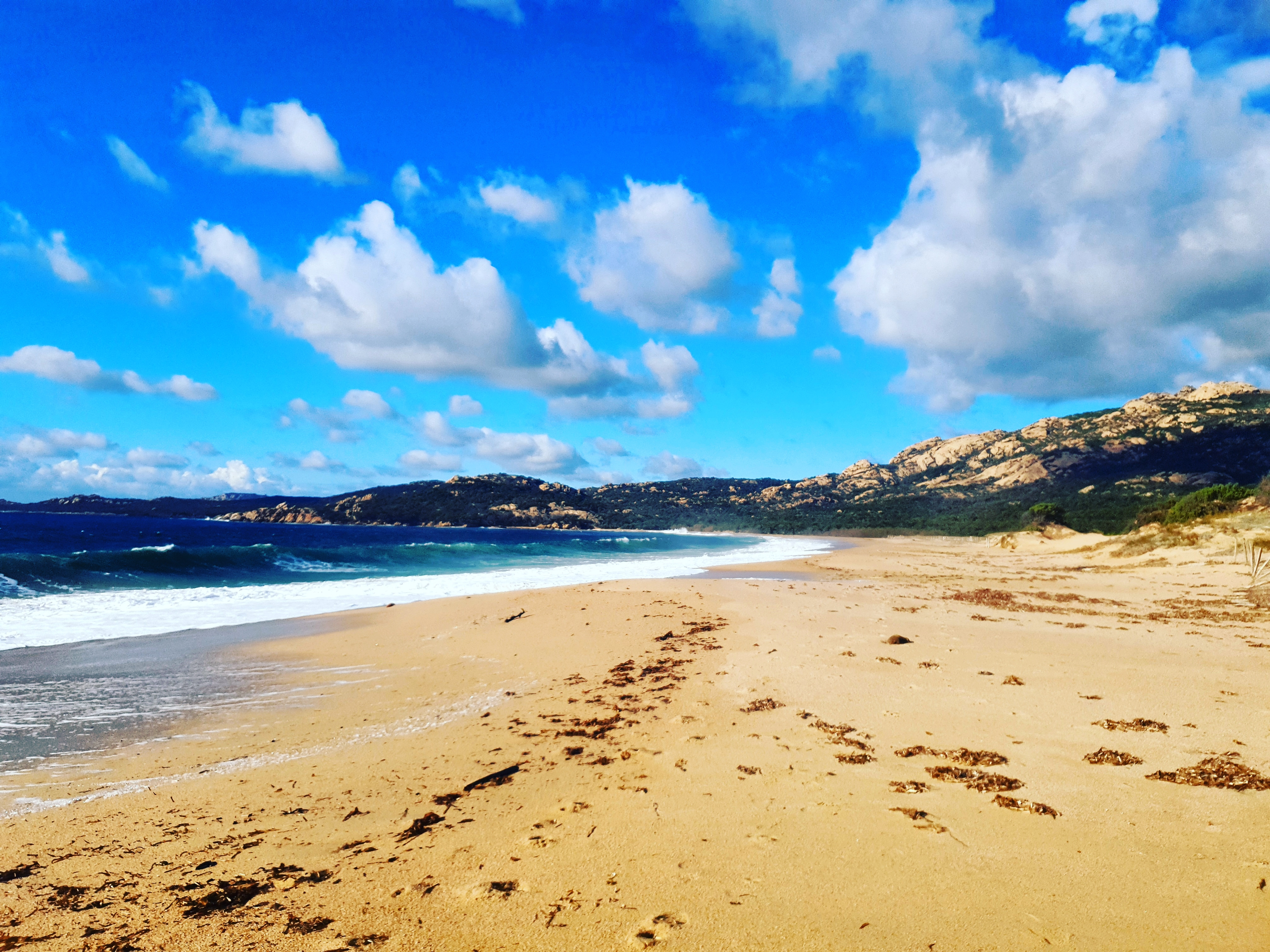 La photo du jour : Sur le sable doré de Murtoli