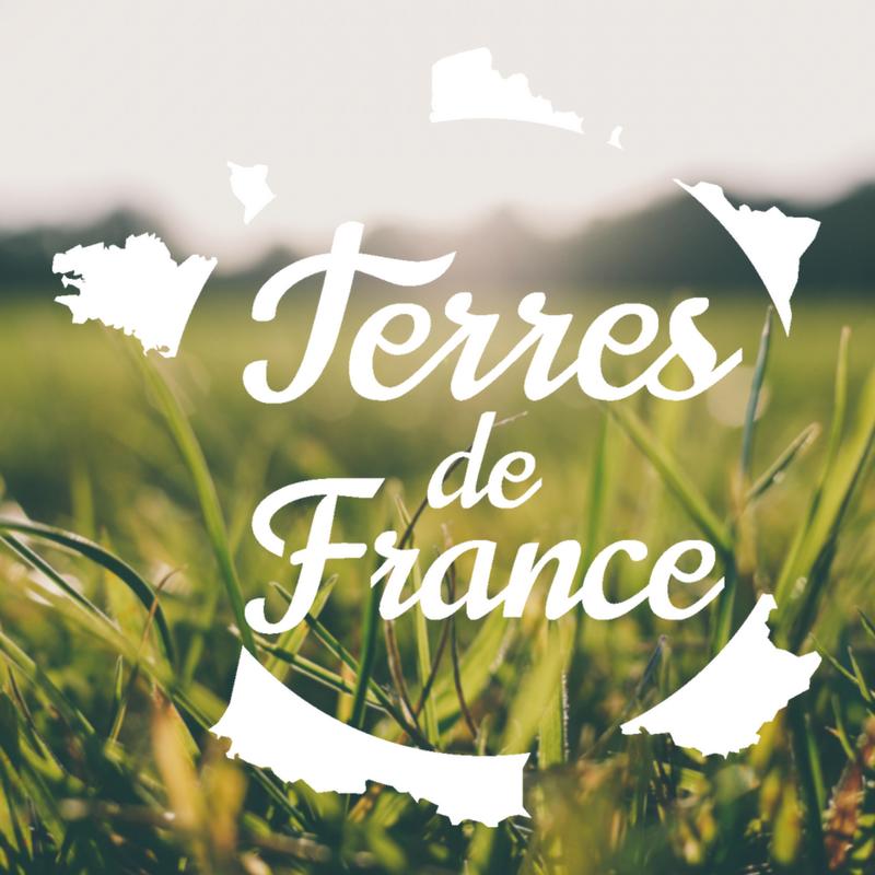 Zoom de la Télévision locale des Hauts de France sur la Balagne