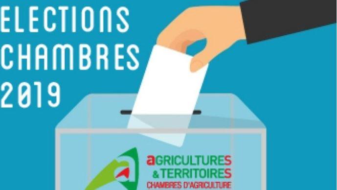 Elections aux Chambres d'agriculture : Vote électronique, mode d'emploi