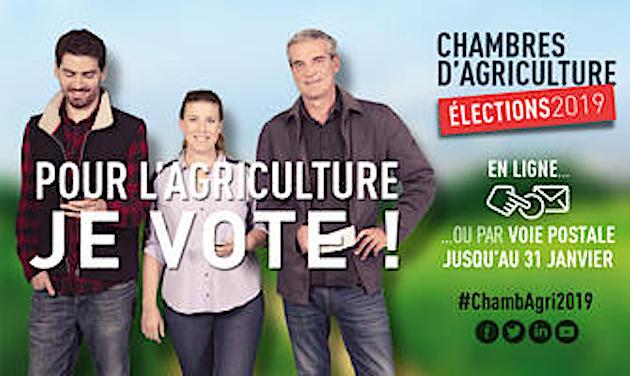 La CFE-CGC de Corse et les élections aux chambres départementales de l'Agriculture