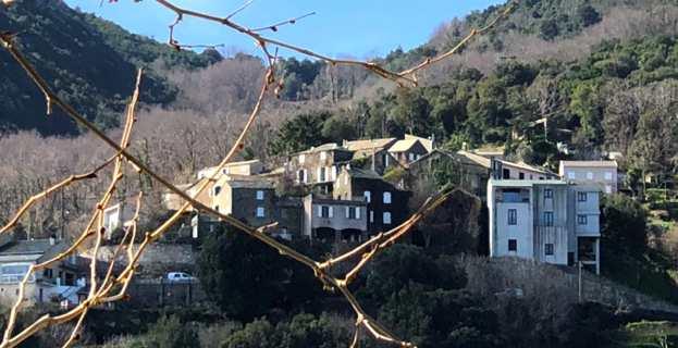 Le hameau de Canale à San Martino di Lota.
