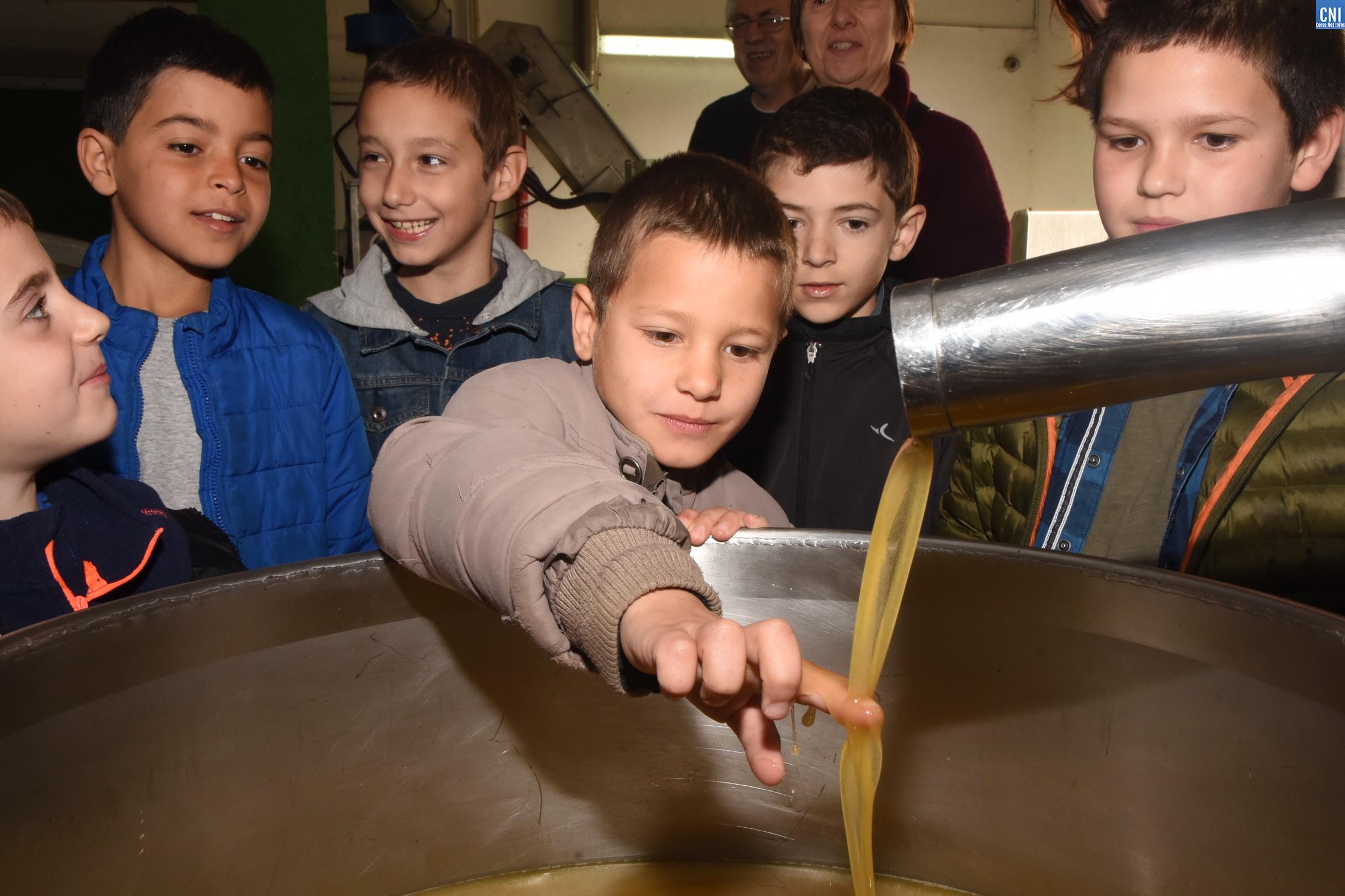 Les élèves de Montegrossu visitent la coopérative oléicole de Balagne