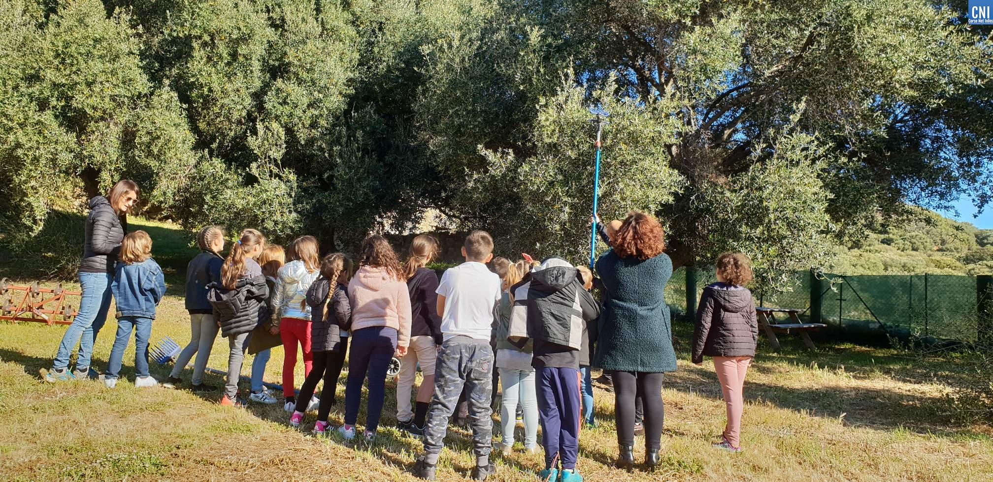 Les classes Agri'Gusti à Santa-Reparata-di-Balagna