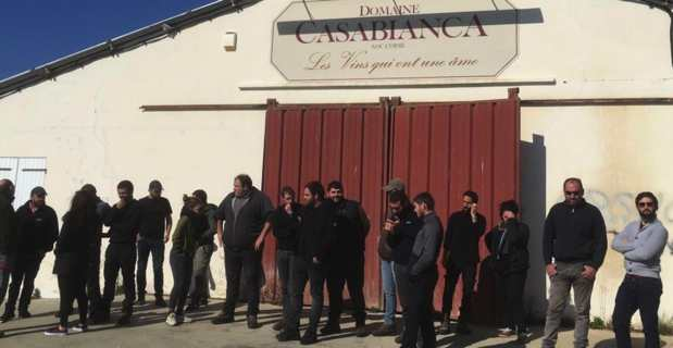 Domaine de Casabianca : Des jeunes agriculteurs dénoncent une main basse sur des parcelles